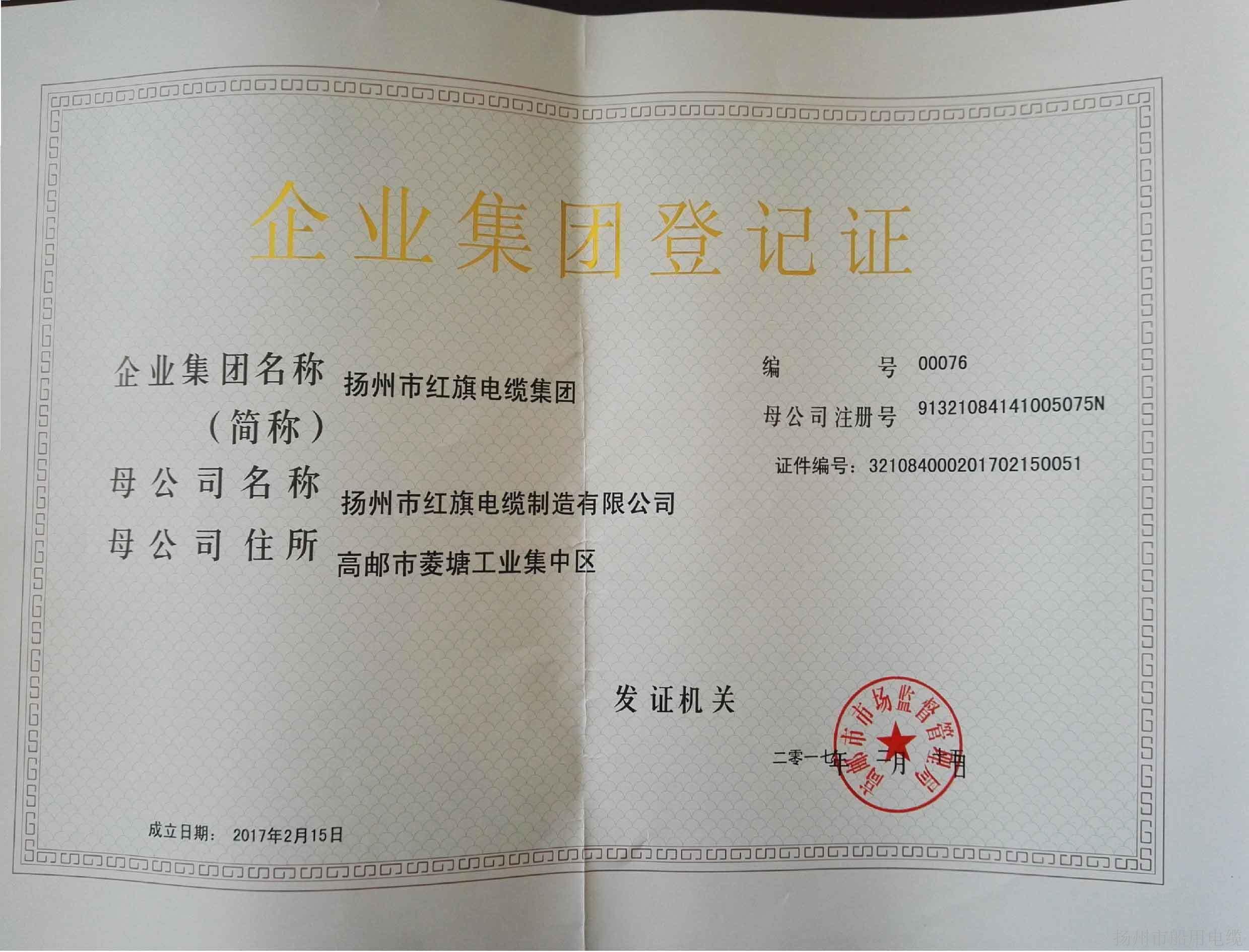 红旗电缆集团登记证